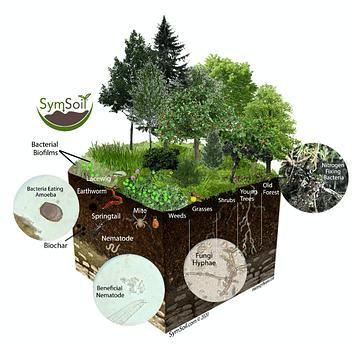 Soil Microbe Biome